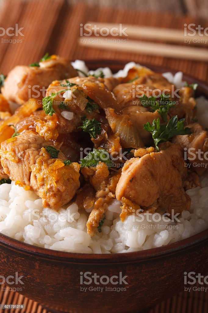 Japanese food: oyakodon with a rice in a bowl macro stock photo