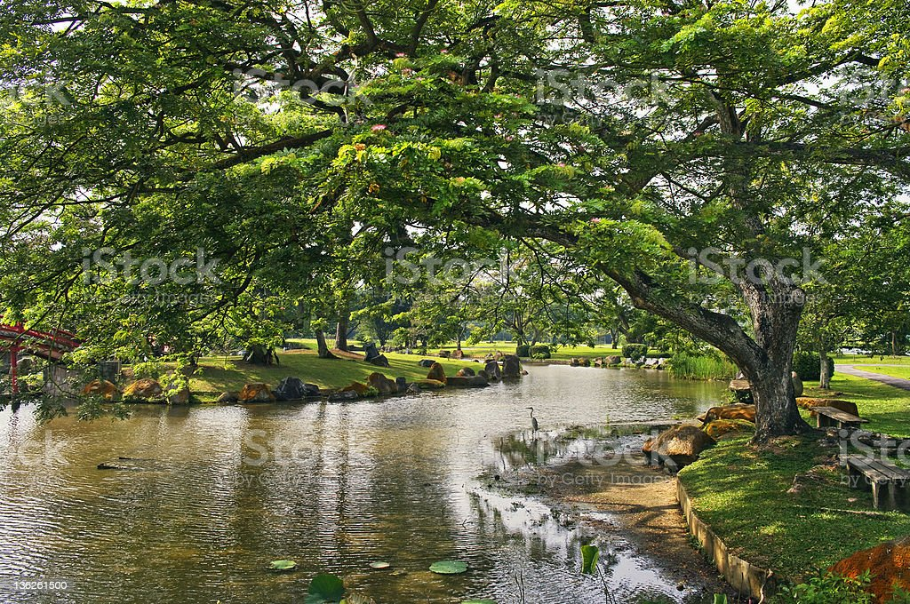 Japanese garden landscape in Singapore stock photo