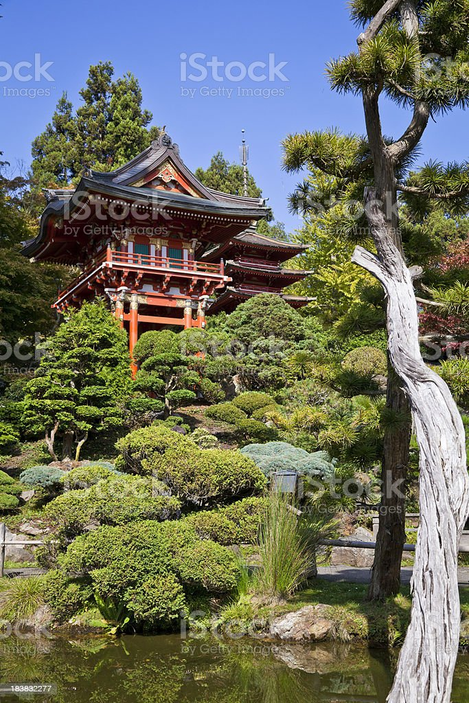 Japanese garden landscape royalty-free stock photo