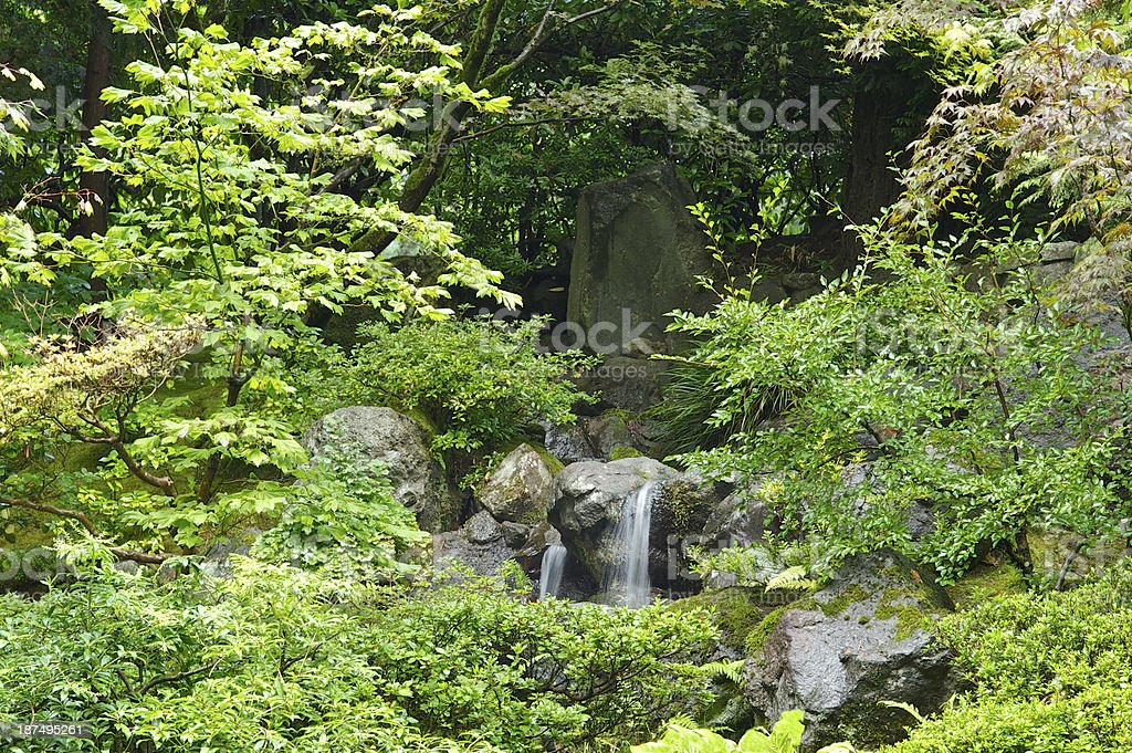 Japanese Garden Portland Oregon Small Waterfall Lush Green Plants royalty-free stock photo