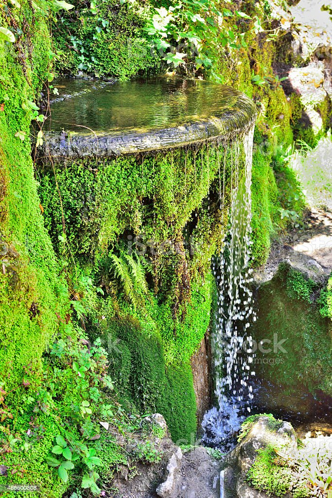 Japanese Garden - Powerscourt Estate - Ireland/County Wicklow stock photo