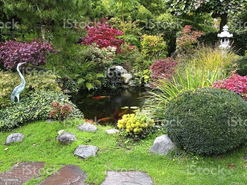 Japanese garden with koi-ponds stock photo