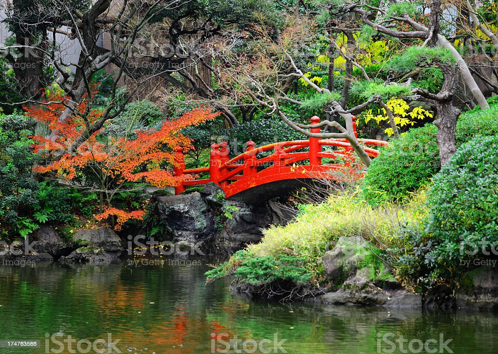 Japanese garden with pond and bridge royalty-free stock photo
