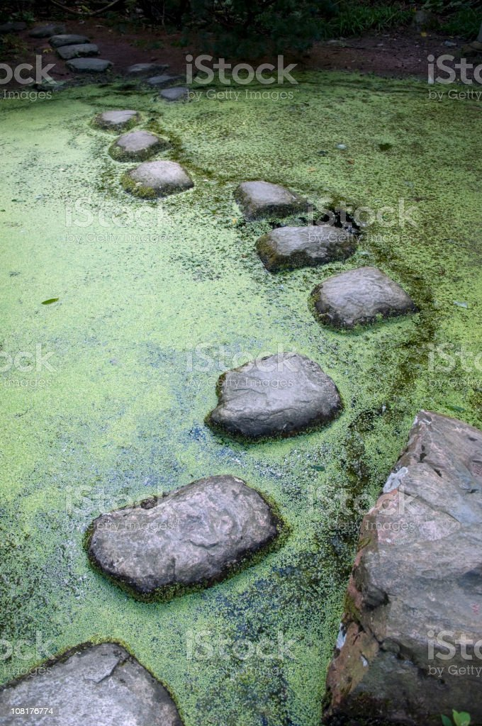 Japanese garden with stepping stones in a pond royalty-free stock photo