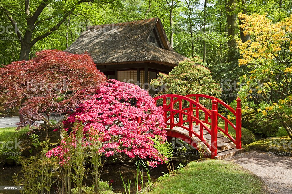 Japanese garden # 4 XXXL stock photo