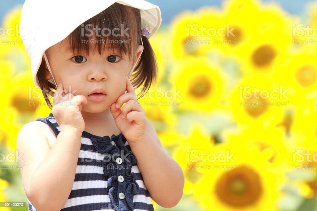 Japanese girl and sunflower field (1 year old) stock photo