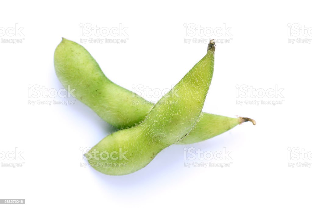 Japanese green soy bean isolated stock photo