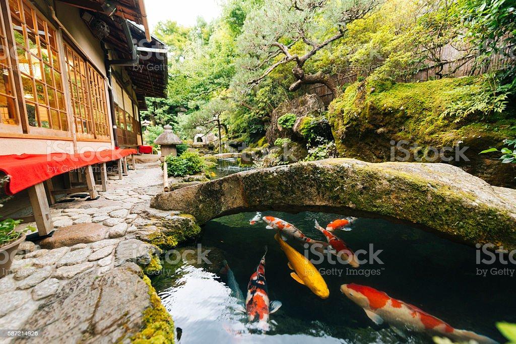 Japanese Koi Pond and Garden Outside Kyoto Japan Kissaten Restaurant stock photo