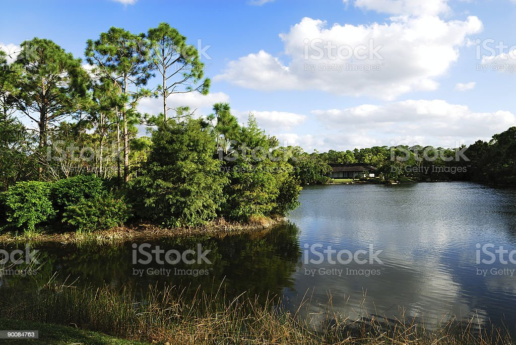 japanese lake garden view stock photo