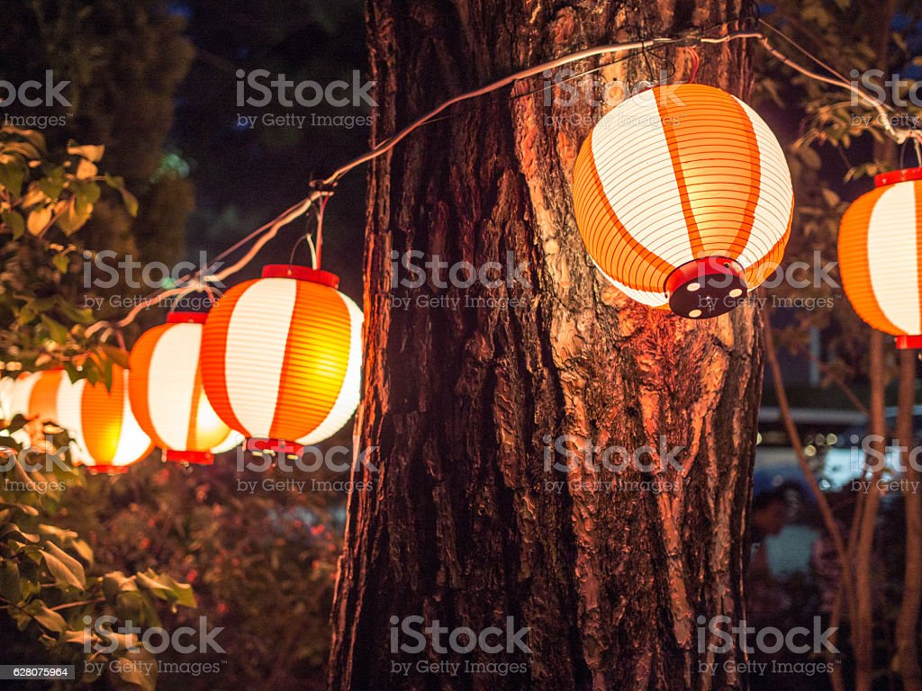 Japanese Lanterns Hanging From Trees stock photo
