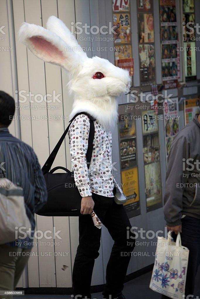Japanese man wearing a rabbit costume stock photo