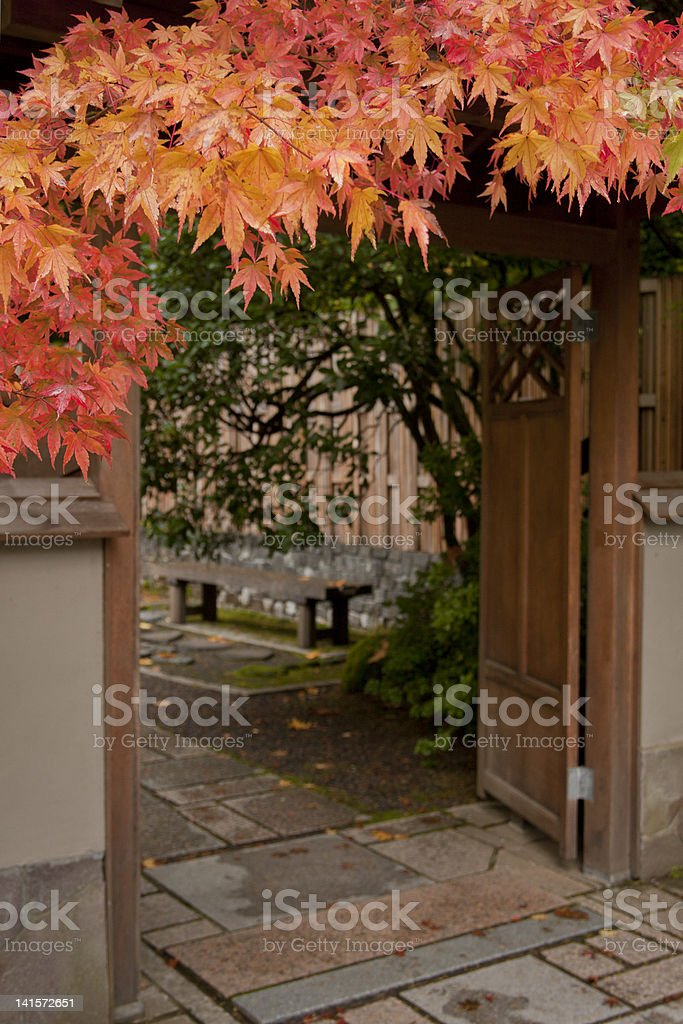 Japanese Maple and doorday royalty-free stock photo