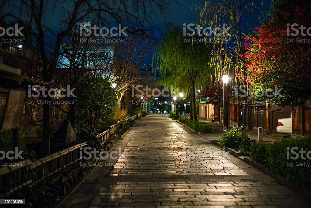 Japanese Maple and Willow on Kyoto street at Night stock photo