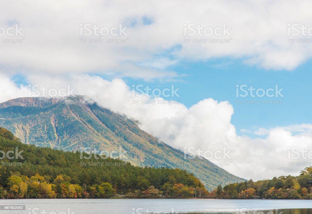 japanese nature stock photo