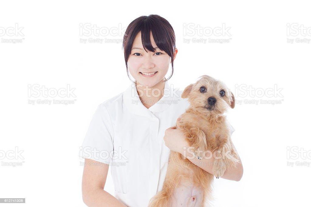 Japanese nurse with a dog stock photo