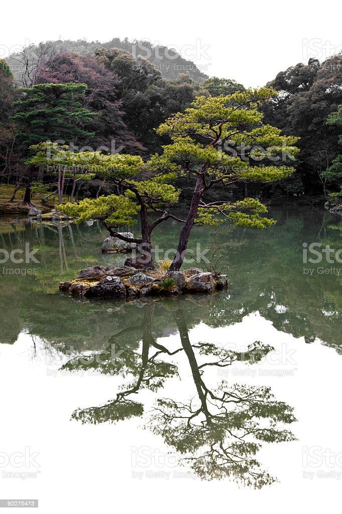 japanese ornamental garden stock photo