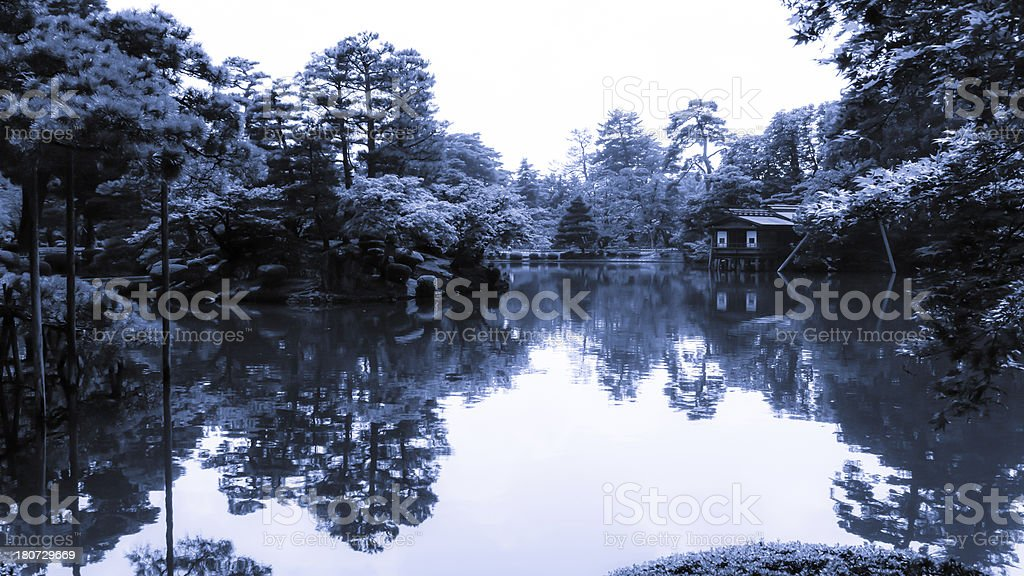 Japanese pond royalty-free stock photo