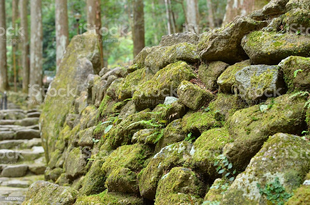 Japanese style stone wall and moss royalty-free stock photo