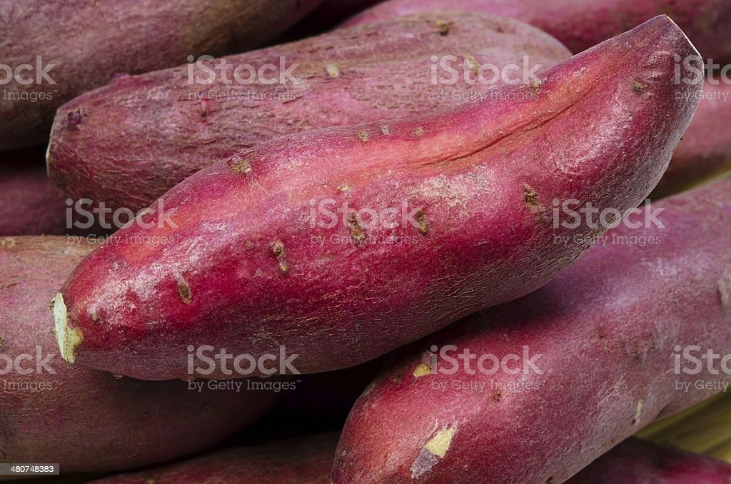 Japanese Sweet Potato stock photo