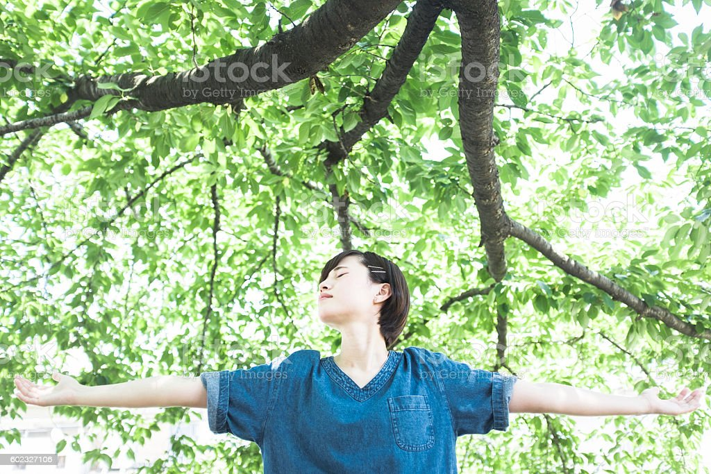 Japanese woman portrait in the shade of a tree stock photo