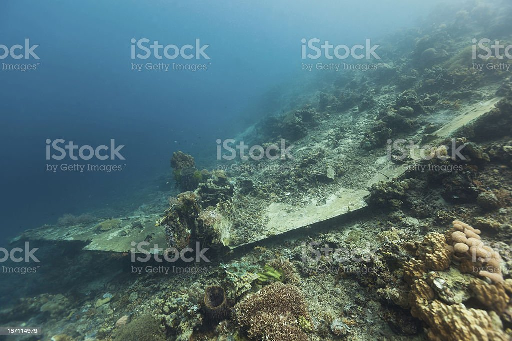 Japanese WW II Airplane Zero Wreck, Cenderawasih Bay, Papua, Indonesia stock photo