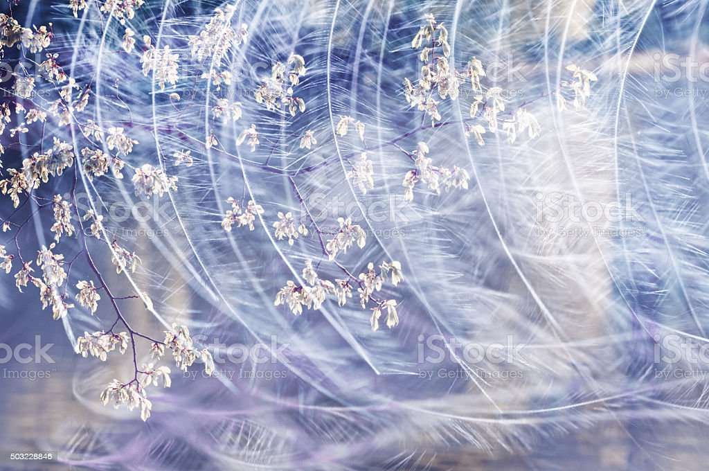 Japanese-style background with feathers in wind. stock photo