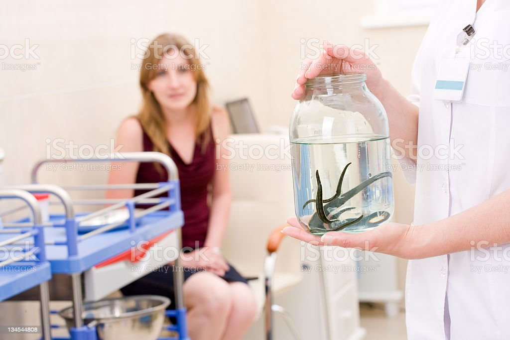 A jar of leeches to be used for hirudotherapy stock photo