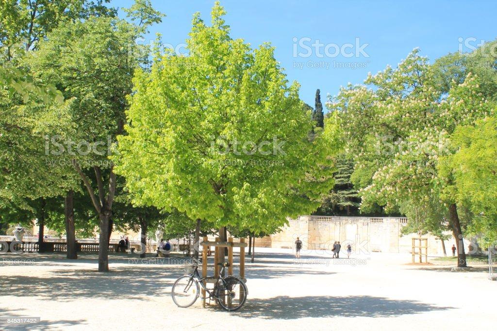 Jardin de la fontaine à Nimes, France stock photo