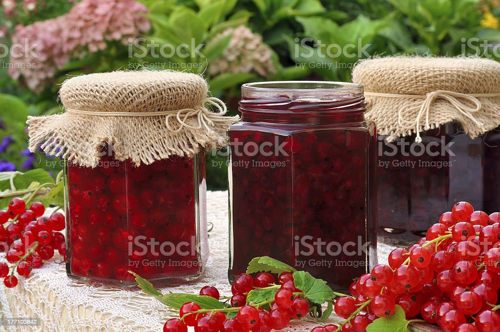 Jars of homemade red currant jam with fresh fruits stock photo