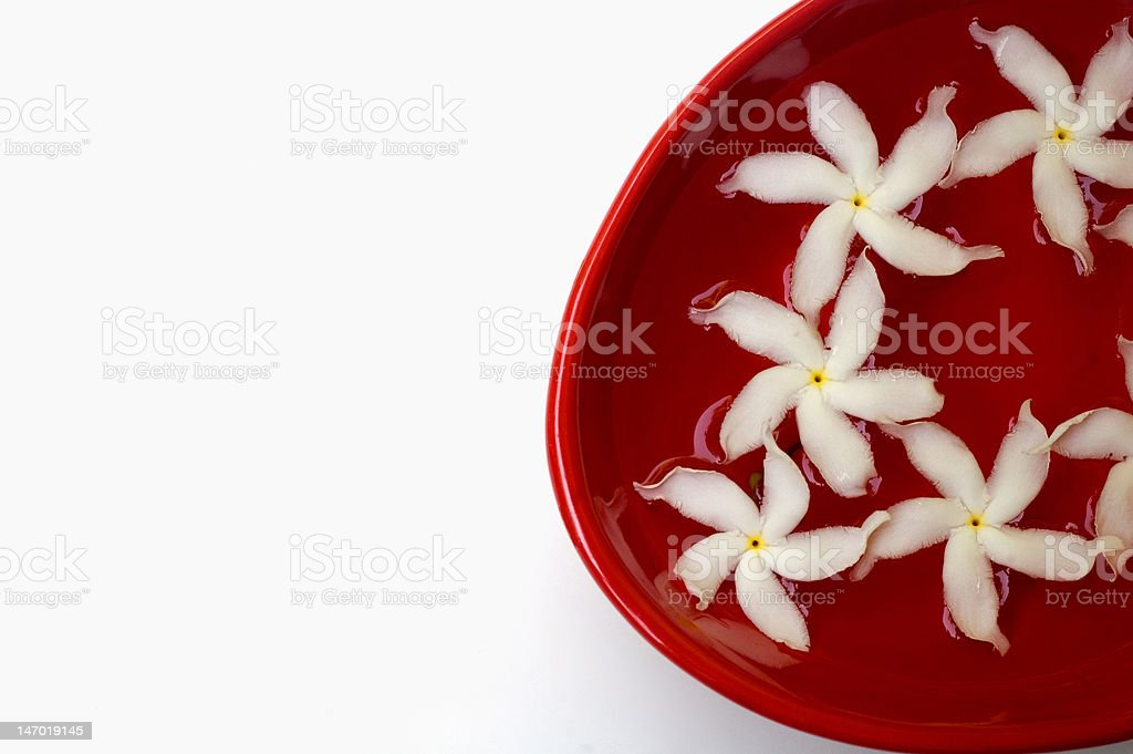 Jasmine petals and water in a red bowl royalty-free stock photo