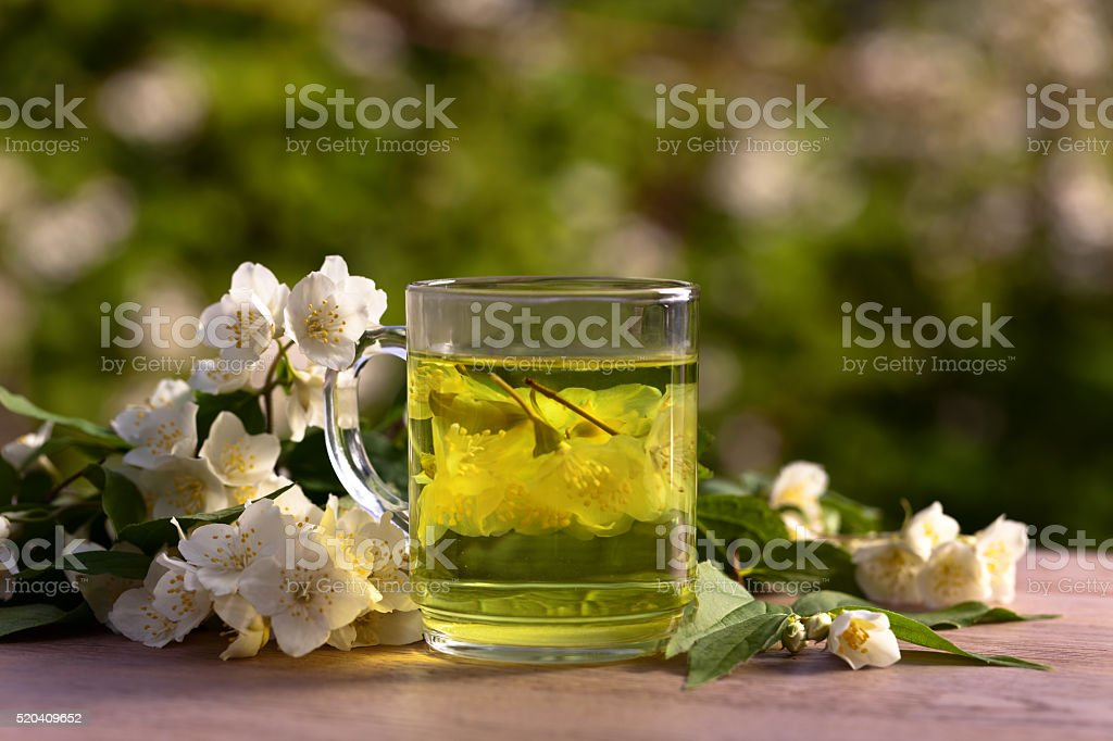 jasmine tea in garden stock photo