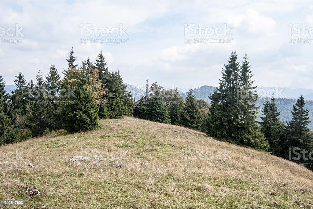 Javorina hill in Velka Fatra in Slovakia stock photo