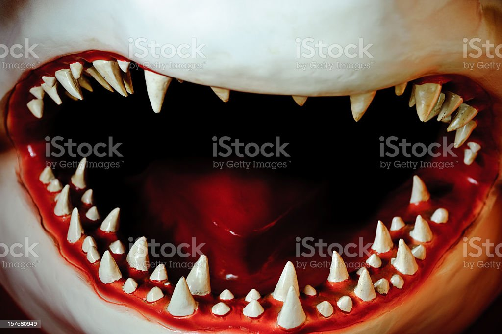 Jaws teeth with mouth and tongue stock photo
