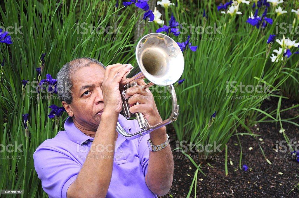 Jazz Musician royalty-free stock photo