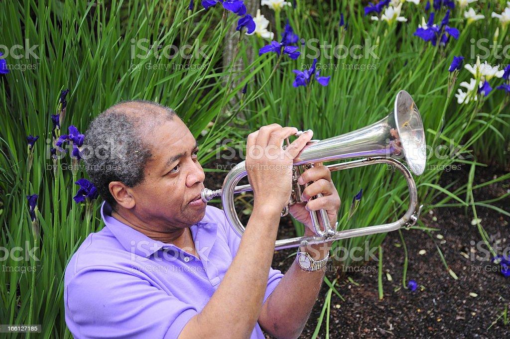 Jazz musician. stock photo