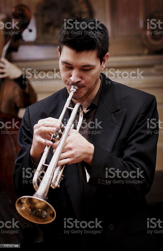 Jazz Series royalty-free stock photo