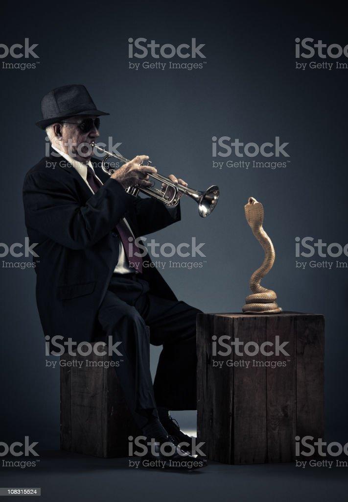 jazz snake charmer stock photo