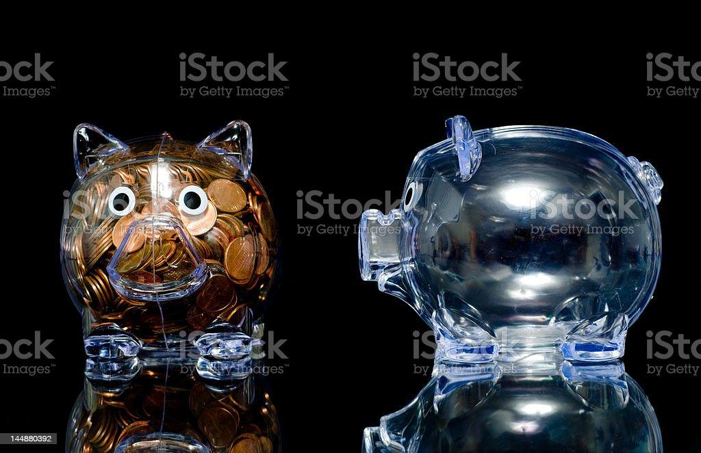 Jealous Pig royalty-free stock photo