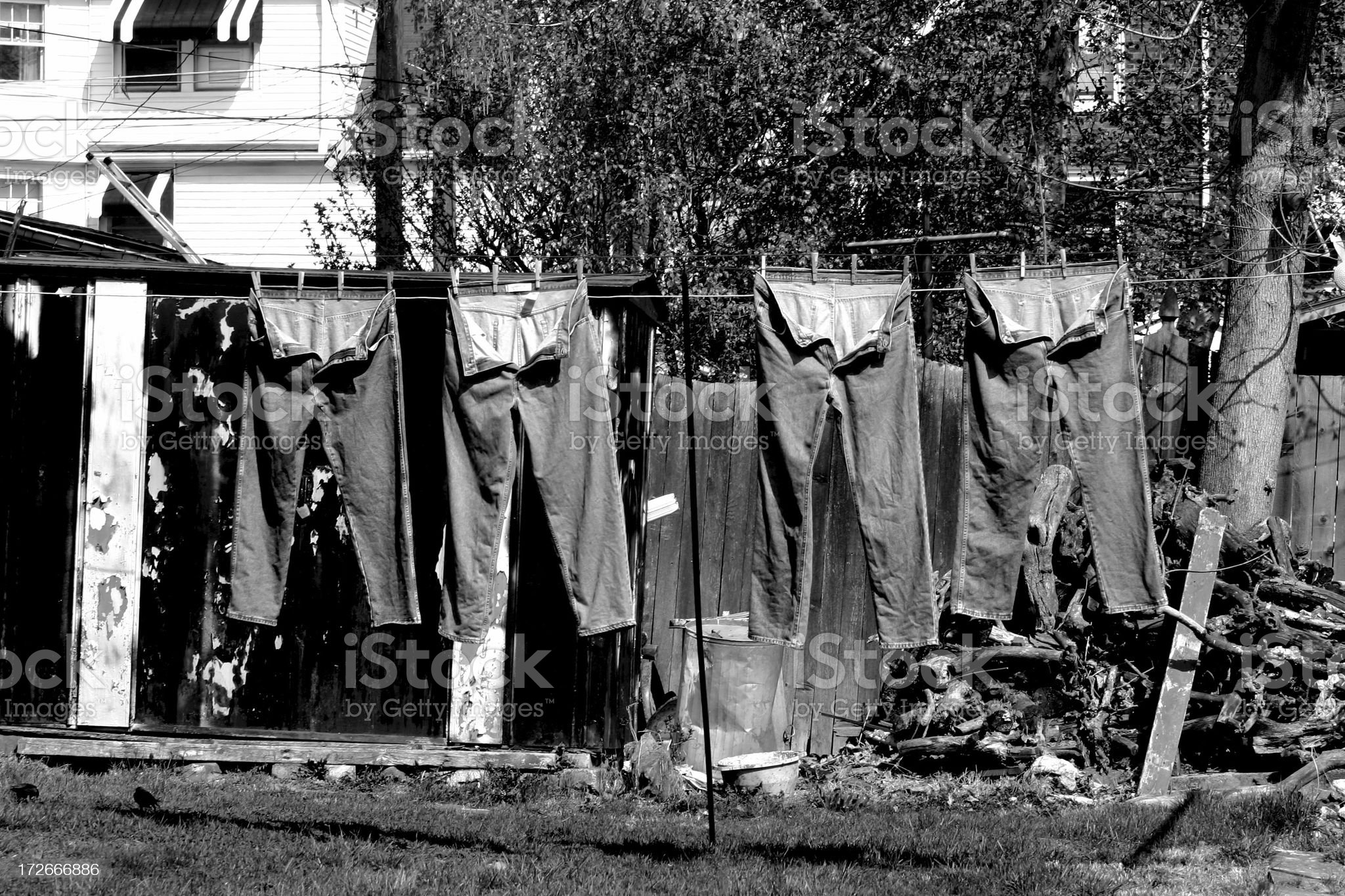 jeans on a wash line royalty-free stock photo