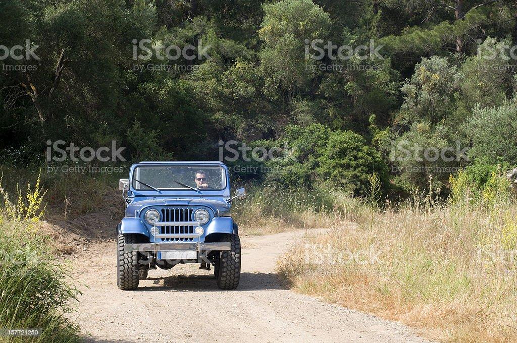 jeep safari stock photo