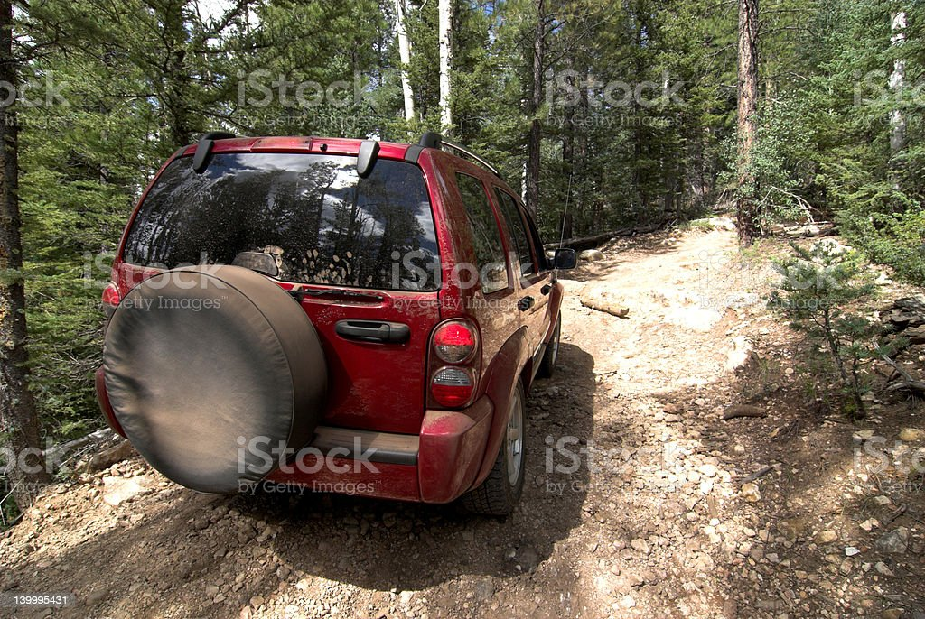 Jeep tour in the woods stock photo