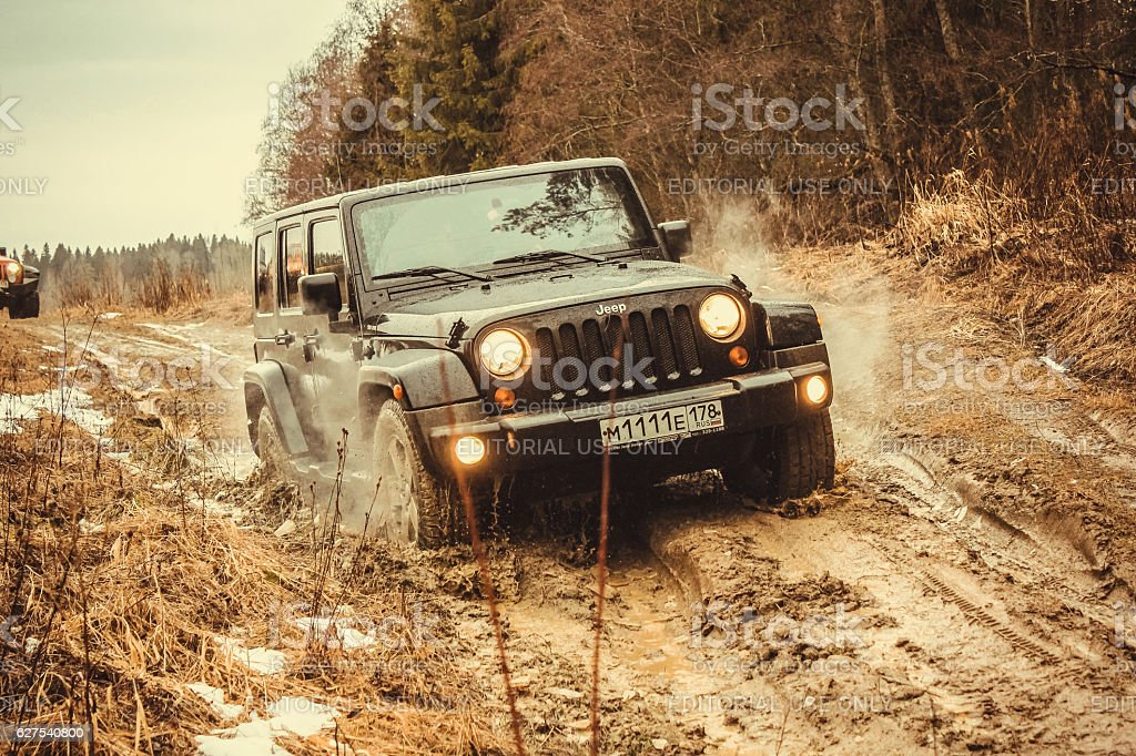 Jeep Wrangler in the forest stock photo