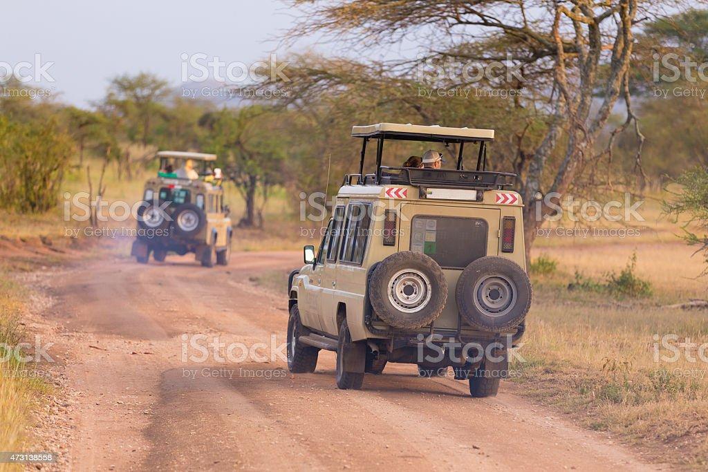 Jeeps on african wildlife safari. stock photo