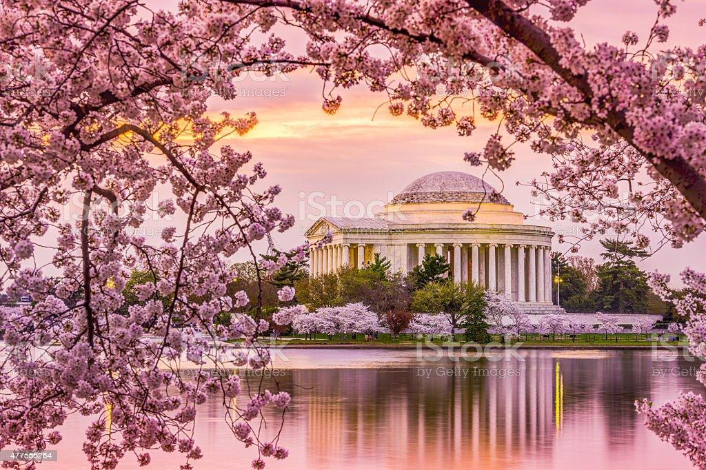Jefferson Memorial in Spring stock photo