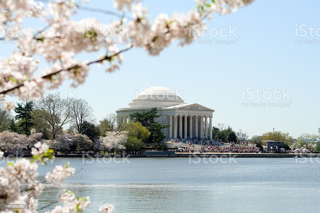 Jefferson Memorial Surrounded by Spring Cherry Blossoms Washington DC royalty-free stock photo