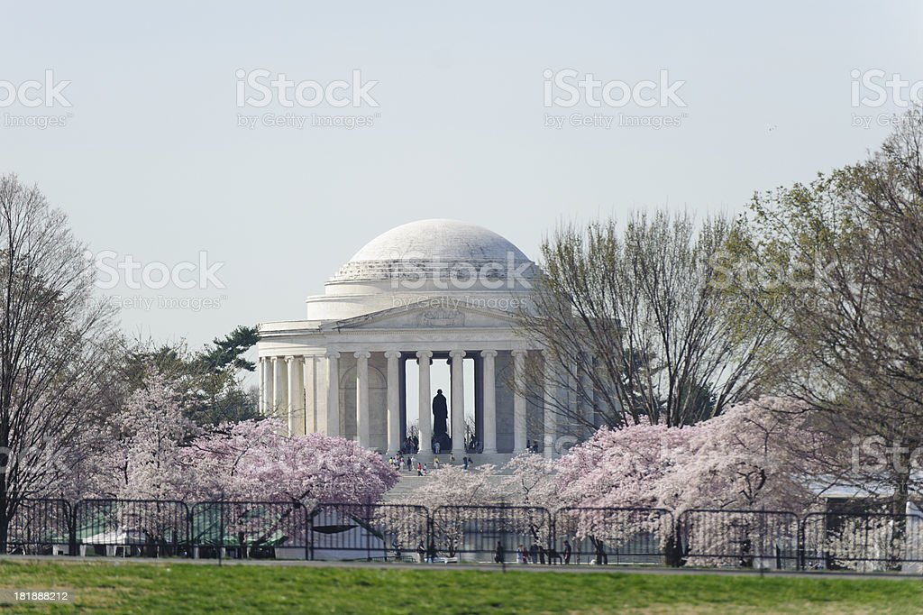 jefferson memorial with cherry blossoms out of focus stock photo