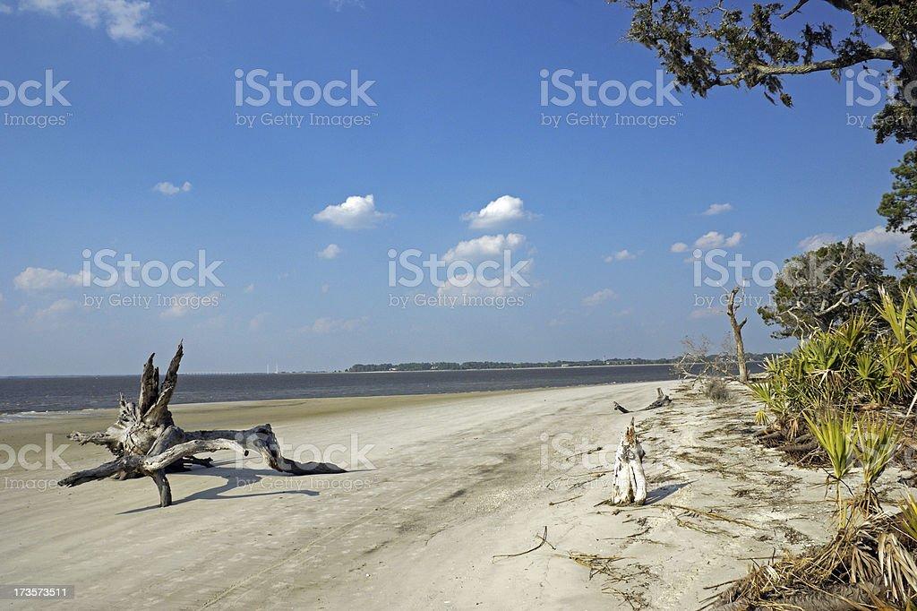 Jekyll Island's Driftwood Beach Georgia stock photo