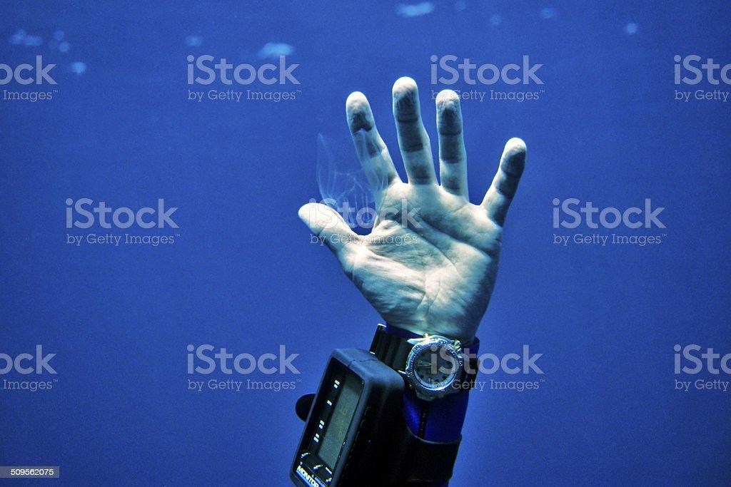 Jellyfish in Hand stock photo