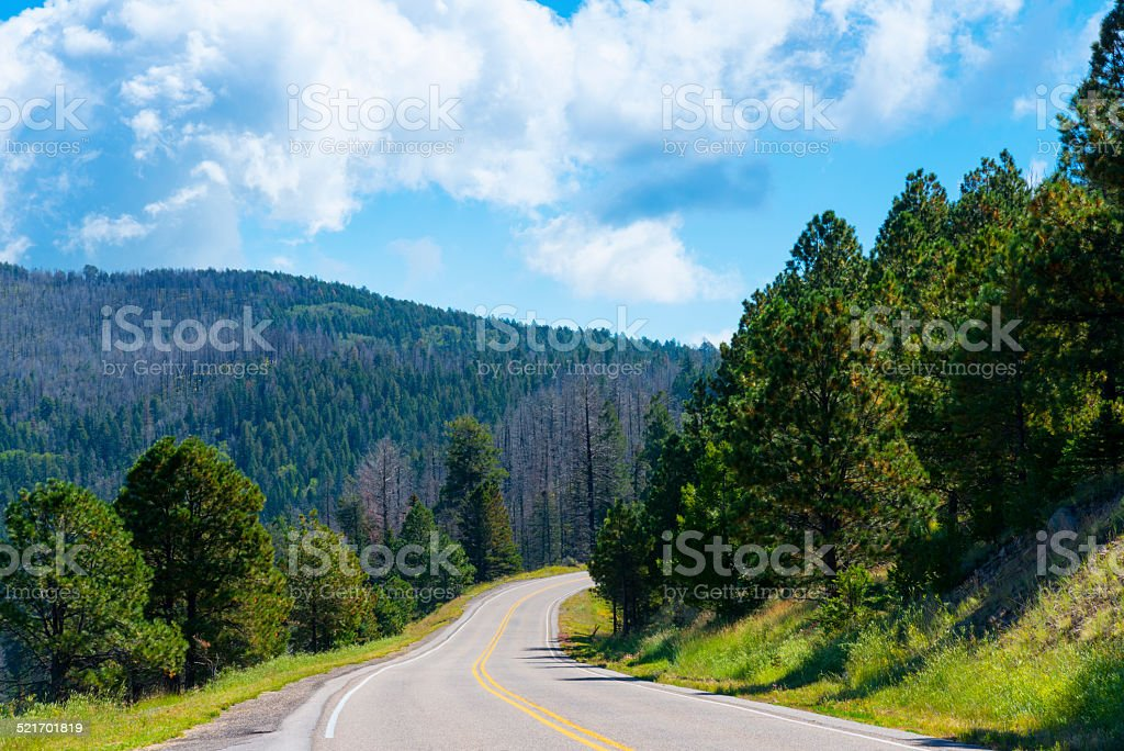 Jemez Mountain Trail Scenic Byway stock photo