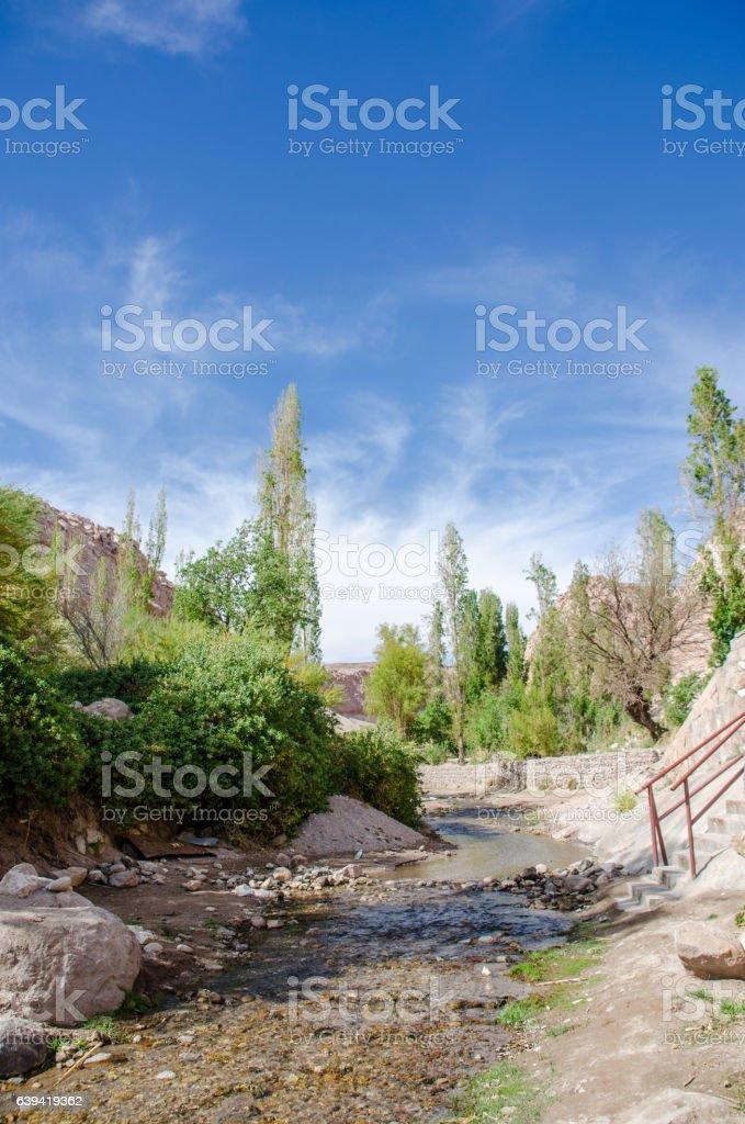 Jerez oasis, Atacama Desert, Chile. stock photo